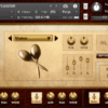 Rhapsody: Orchestral Percussion – Aux Percussion