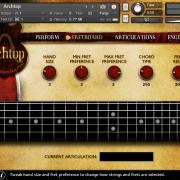 Archtop – Fretboard